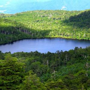 北八ヶ岳 白駒池    ~苔とキノコの森~