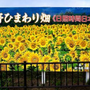 明野ひまわり畑  ~この夏2度目のひまわり畑~