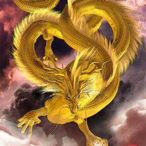 龍の教え~神社で名前と住所を言うのは○○の感覚