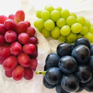 長野の葡萄が美味すぎる件