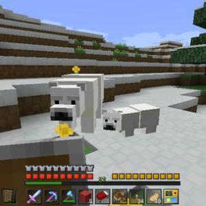 [Minecraft] Act.447 -強行軍