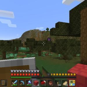 [Minecraft] Act.448 -移動