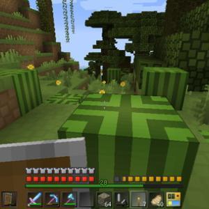 [Minecraft] Act.454 -密林