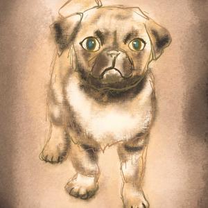 犬の絵をアイコン化