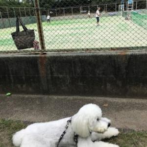早朝テニスへミルクと一緒に!(^^)!