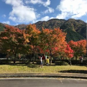 紅葉の「梅ヶ島」へテニス合宿へ