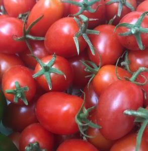 我家ではミニトマトが今も!(^^)!