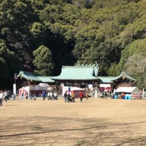 初詣は静岡護国神社へミルクと!(^^)!