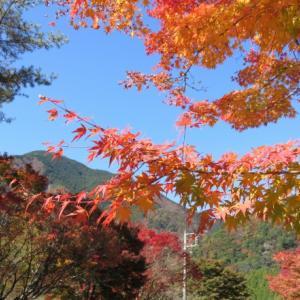静岡「梅ヶ島コンヤの里」でテニスと温泉に