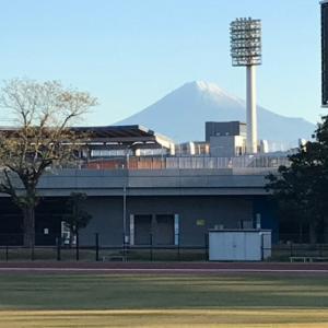 ミルクと草薙競技場散歩し早朝テニスへ