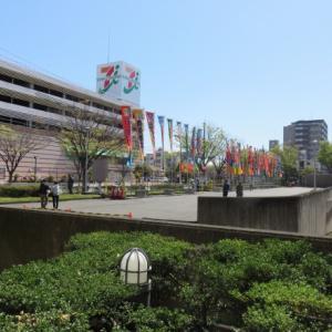 大相撲地方巡業「富士山静岡場所」へ
