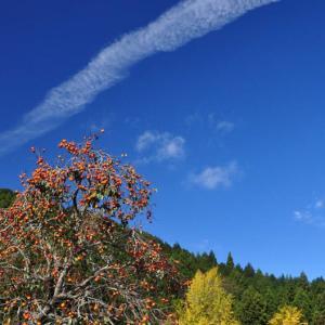 ひこうき雲は雨を呼ぶ