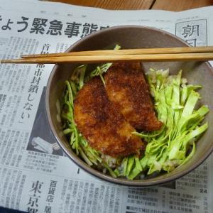 夏は冷たい麺がいいね  野菜ジュース素麺 ニラ・ダイコン蕎麦 ソースカツ丼