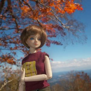 那須ゴンドラに乗ってきた 山頂の紅葉がすごかった