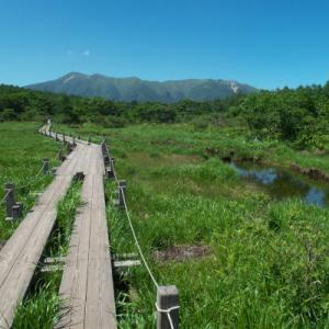 那須に行った 今日も草刈り ギャラリーバーン 沼原湿原