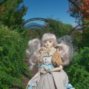 花菜ガーデン 8 秋の気配 J-doll ST SAUVEUR