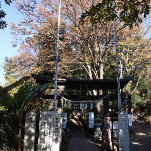 南大沢氷川神社 (東久留米市南沢)