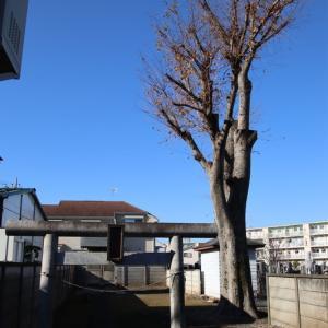 稲荷神社 (東久留米市八幡町)