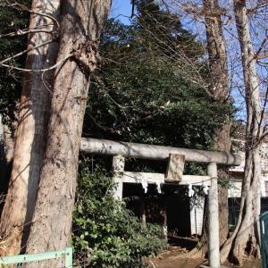 猿田彦神社  杉並区本天沼