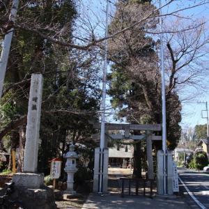 笹井白髭神社  狭山市笹井