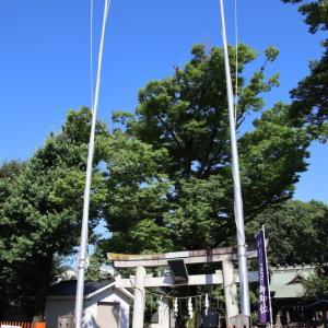 中野島稲荷神社  川崎市多摩区中野島