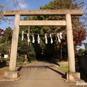 小谷田氷川神社 (埼玉県入間市小谷田)