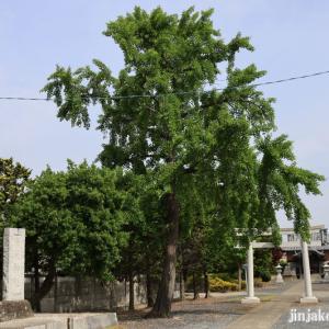 麦塚女軆神社 越谷市川柳町
