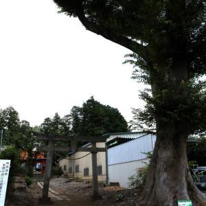 氷川神社  所沢市日比田