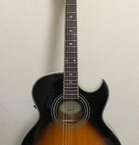 借り物ギターエピフォンPR-5E/VS