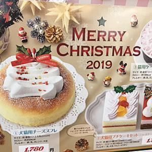明日はクリスマスイブ!!