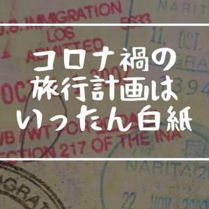 飛行機で行く旅行計画はいったん白紙