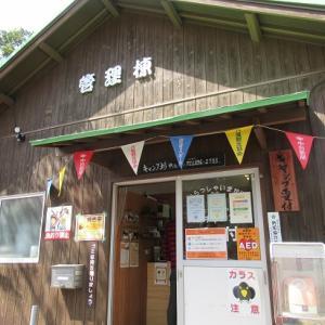 お花見シーズンはどこもいっぱい!運よく当日予約ゲット~三重県 八風キャンプ場