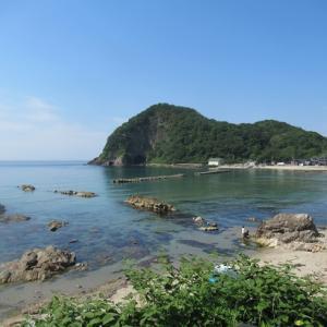 日本海で磯遊び