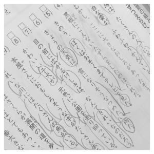 文法定着まで −国語−