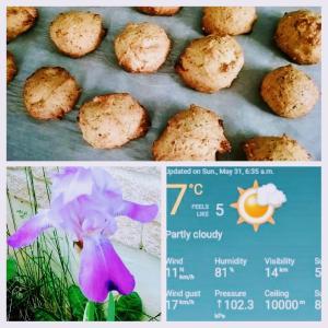フンワリ香る紅茶クッキーのポイント、素敵な紫のうちのアヤメ、モコモコバスローブに包まれる