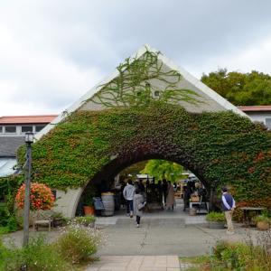 山田温泉の旅 サンクゼールワイナリー ワインフェスタ