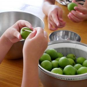 子どもたちの梅シロップ作り*2020