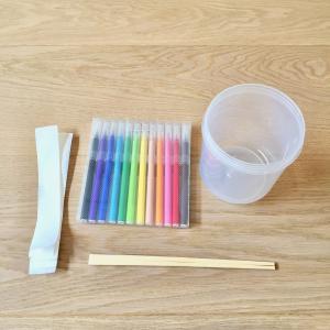 【小学1年生】簡単な夏休みの自由研究*第1段*色のひみつ