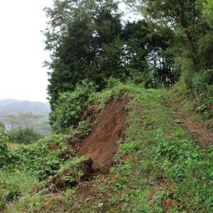 篠窪(しのくぼ) 了全山(りょうぜんさん)の登り口が土砂崩れ (2019/10/17)