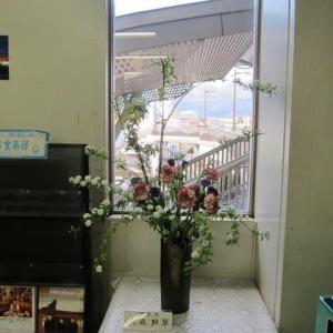 篠窪(しのくぼ)の隣町にて  渋沢駅の活け花(芳月流)を楽しむ(2020/01/18)