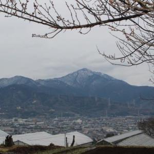 篠窪(しのくぼ)の隣町 震生湖から見る丹沢の雪(2020/01/27)