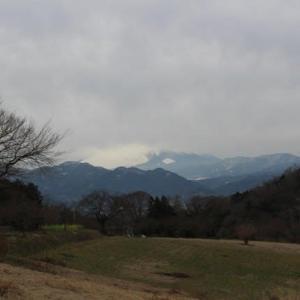 篠窪(しのくぼ)にて 富士山と丹沢の雪景色を楽しむ その2 (2020/01/27)