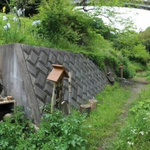 篠窪(しのくぼ)にて 篠窪大橋の下「蛍の水」付近の景色 (2019/05/09)