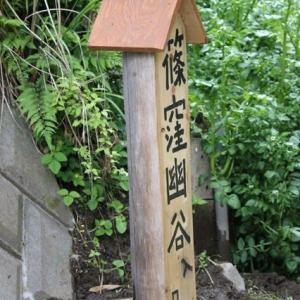 篠窪(しのくぼ)「篠窪大橋」の下に「篠窪幽谷」の看板が設置されました (2019/05/13速報)