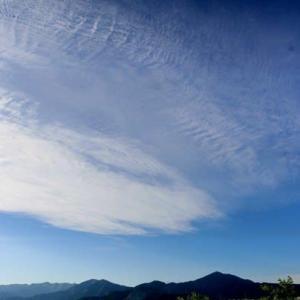 篠窪(しのくぼ)の隣町で  コロナ明けと梅雨明けを待ちわびる (2020/05/23)