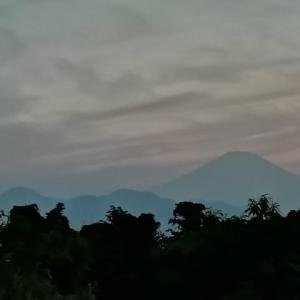 篠窪(しのくぼ)にて 夕暮れの富士山を楽しむ (2020/06/04)
