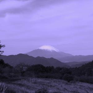 篠窪(しのくぼ)より 久しぶりに雪を被った富士山を楽しむ (2020/10/20)
