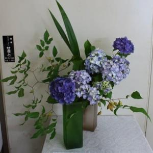 篠窪(しのくぼ)の隣町 渋沢駅の生け花 紫陽花を楽しむ (2021/06/08)