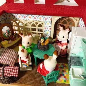 きいちごのお家がぎゅうぎゅう!!お家がほしい。。