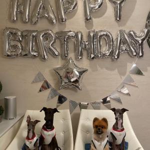 ポムちゃんの誕生日会